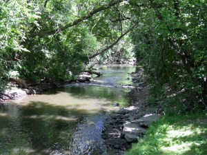 Indian Creek--next to the home where I grew up in Half Day, Illinois